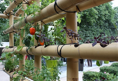 1000 images about jardins gourmands on pinterest for Decoration jardin potager