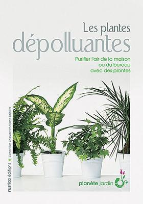 Les plantes d polluantes genevi ve chaudet un je ne - Petite plante de bureau ...