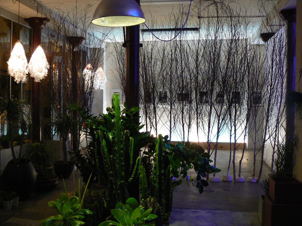 La Galerie Végétale