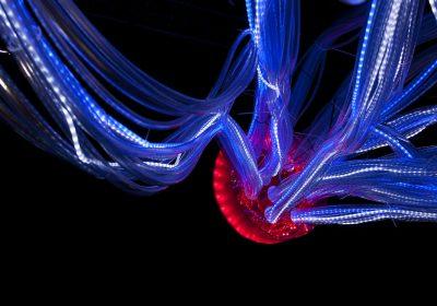 Elsewhere beyond vincent gr goire agence nelly rodi for Art et decoration janvier 2014
