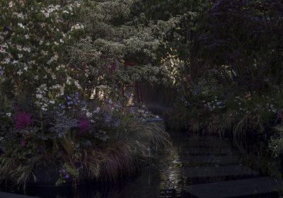 Le jardin noir bureau d tudes horticulture jardins for Jardins paris 2015