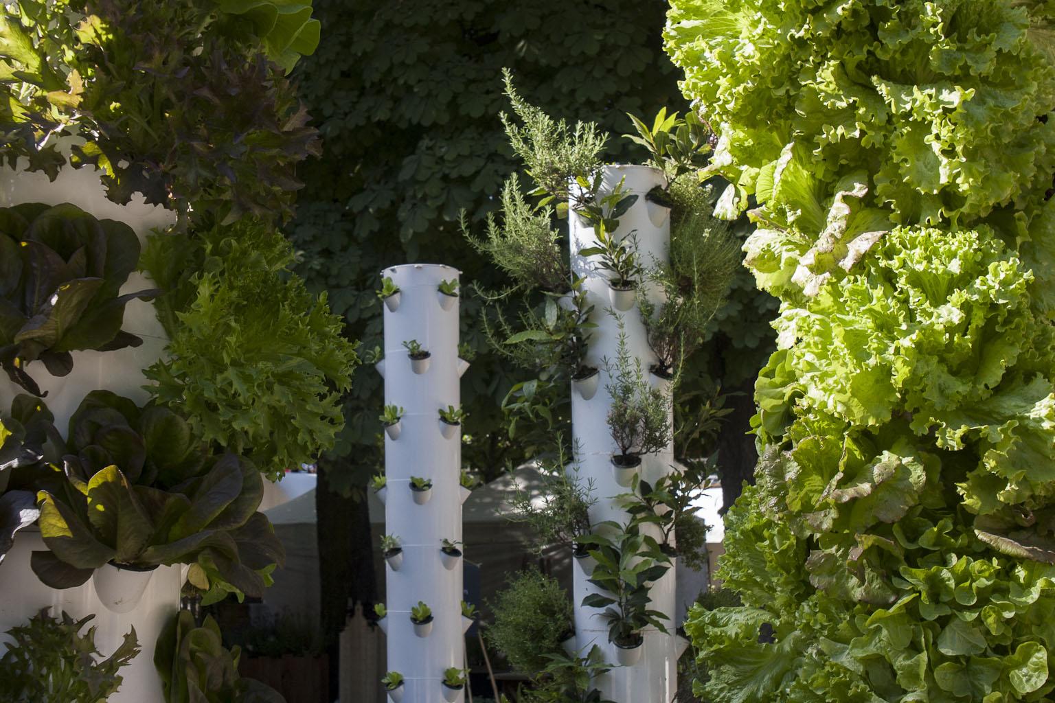 Colonnes hydroponiques - Les fermes en ville - Jardins Jardin 2015 aux Tuileries - Paris