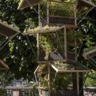 Jardins, jardin aux Tuileries 2015, les tendances du jardin urbain