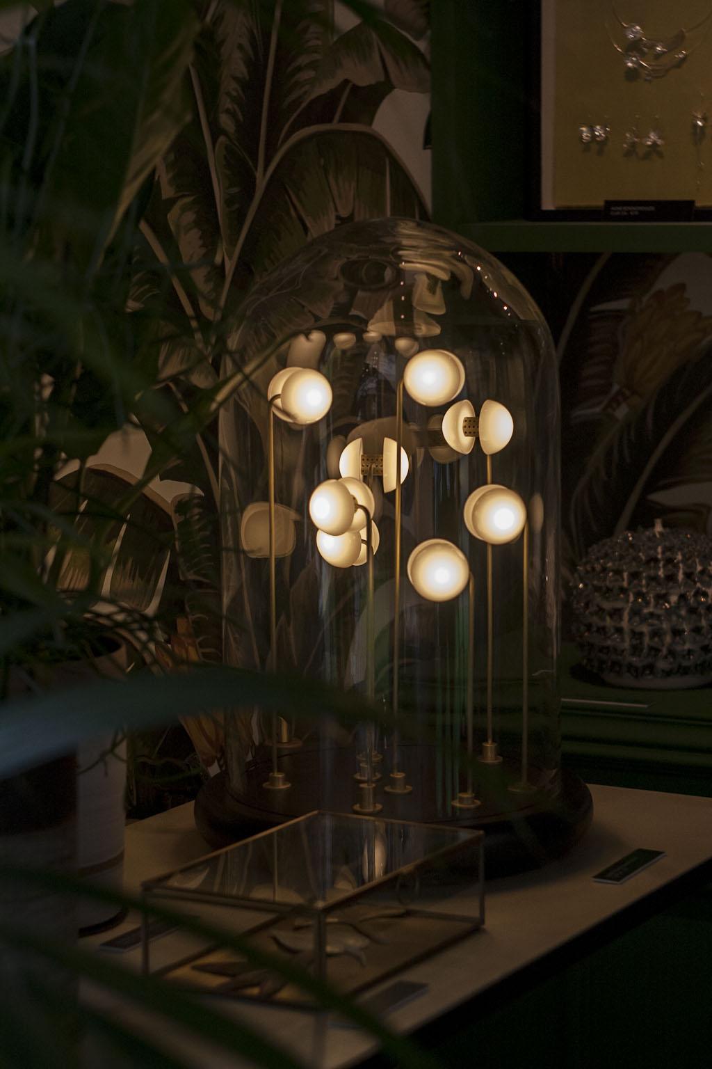 Thierry Toutin, Luminophile - Nature précieuse - Elizabeth Leriche