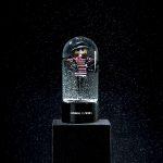 Dossier Noël 2008